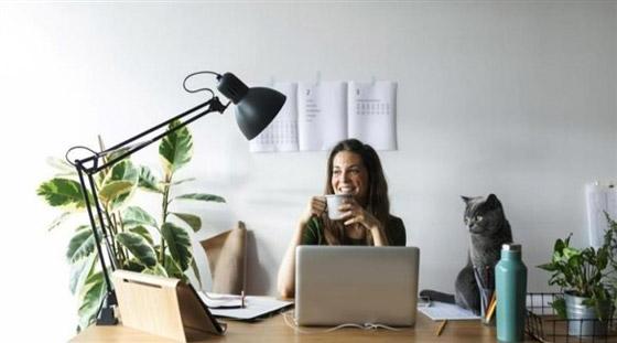 صورة رقم 4 - كيف تحصل على إضاءة جيدة لمكتبك المنزلي؟