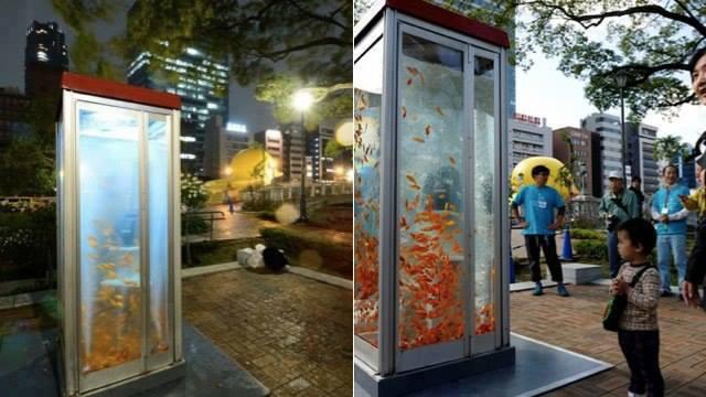 اليابان وفن ابداعي لكابينة الهواتف العمومية