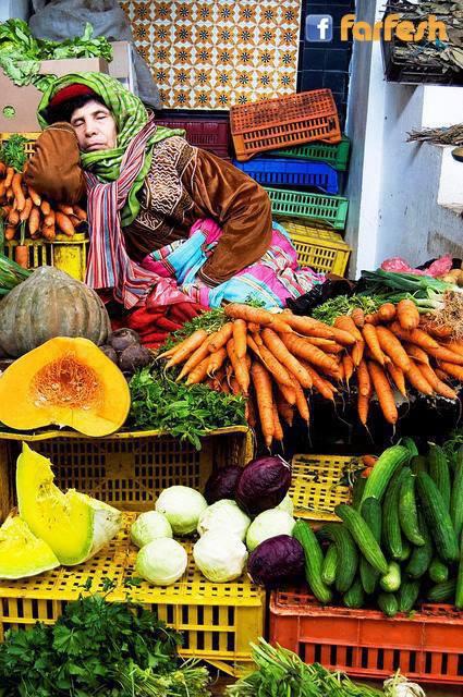 صورة لبائعة خضار من تونس ,