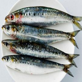 إليكم أفضل وأسوأ أنواع السمك على الصحة