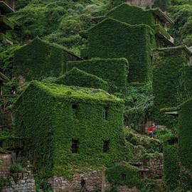 هوتوان.. قرية مهجورة ساحرة غمرتها الأعشاب! صور