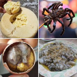 جبن باليرقات ومقبلات من العناكب.. إليكم أشهر الأطعمة الغريبة حول  ..