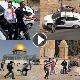 فيديوهات صادمة: بعد اقتحام شرطة إسرائيل للمسجد الأقصى، مستوطن يدهس  ..