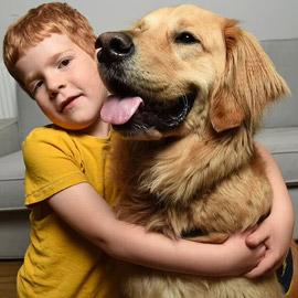 صداقة رائعة مؤثرة بين طفل كفيف وكلب مخلص يعوض الطفل عن فقدان حاسة  ..