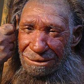 استوطنوا الأرض في عصور ما قبل التاريخ.. من هم النياندرتال؟