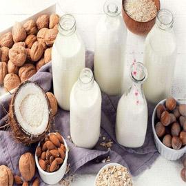 جوز الهند.. وبدائل صحية ولذيذة تلبي احتياجاتنا اليومية من الحليب