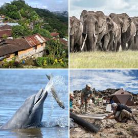 بالصور: جائزة (وايتلي) للصور الطبيعية تعلن أسماء الفائزين لعام 2021
