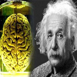 هل دماغه مختلف فعلا؟ قصة سرقة دماغ أينشتاين واللعنة التي أصابت سارقه