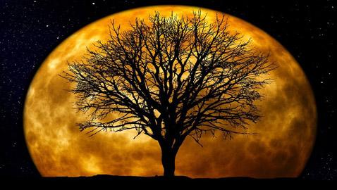 ما تفسير ظاهرة القمر الوهمي العملاق الذي رآه البشر ولم ترصده الكاميرات؟