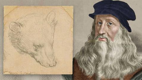 عرض رسمة نادرة (رأس الدب) للرسام دافنشي بمزاد بـ17 مليون دولار