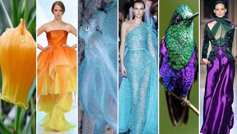 بالصور: إليكم أروع وأغرب صيحات الموضة المستلهمة من الطبيعة