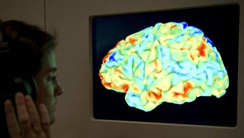 أمل لمرضى باركنسون.. مركب موجود في الفاكهة يحمي الدماغ
