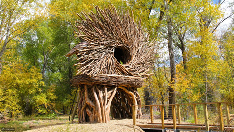 أغرب منازل حول العالم مستوحاة من الطبيعة