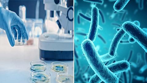 قادرة على الحديث.. إليكم معلومات مذهلة عن البكتيريا لم تسمعوا بها من قبل